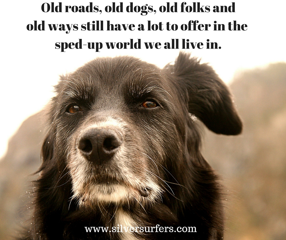 Old roads, old dogs, old folksand old ways still have a lotto offer in the sped-up world we all live in. (1)
