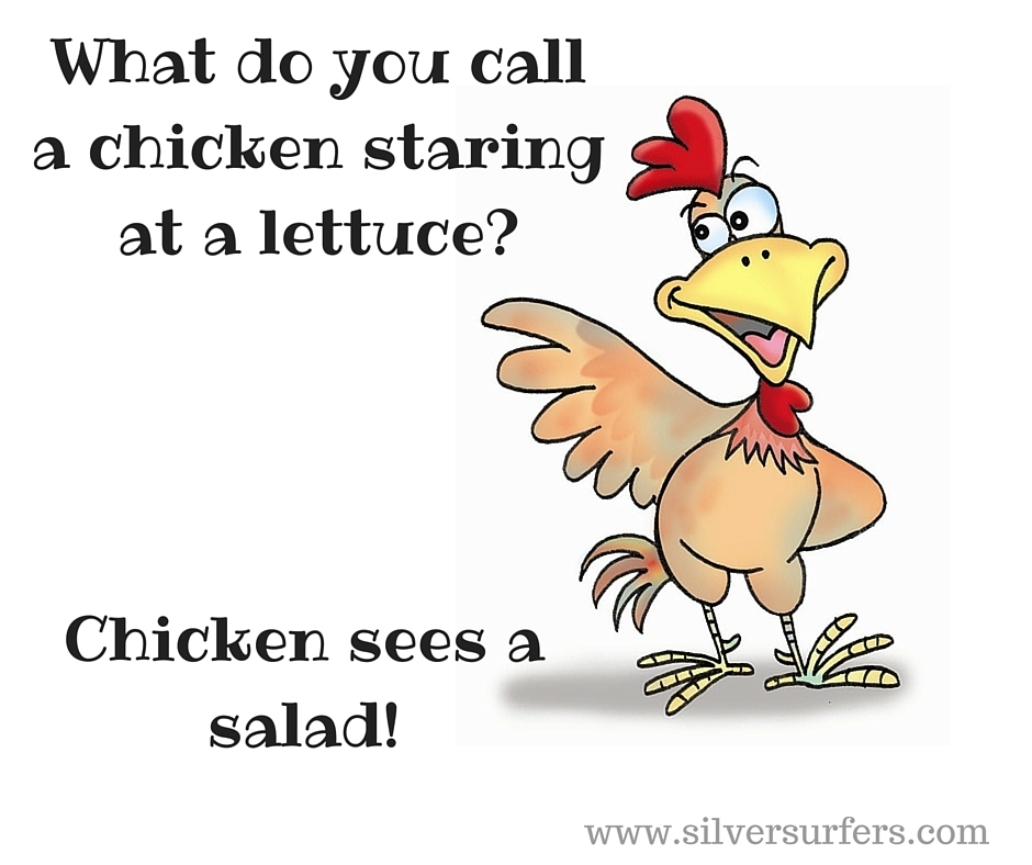 What do you call a chicken staring at a lettuce-