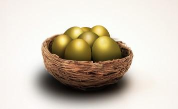 bigstock-Nest-eggs-16037291