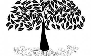 bigstock-Big-Tree-Silhouette-47702476