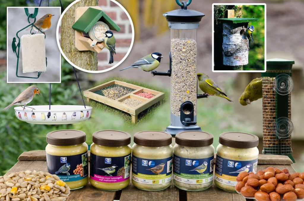 A selection of bird foods