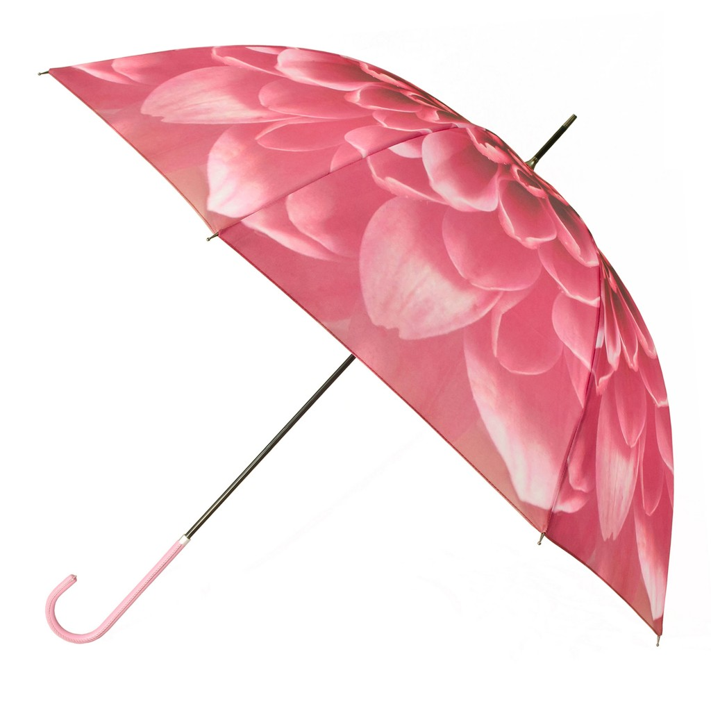 Elegant walker umbrella, £25 (www.totes.co.uk)