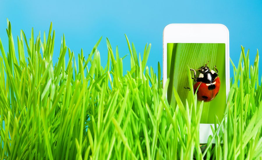Best Of The WebLifestyleGarden On The Go With The Best Gardening Apps