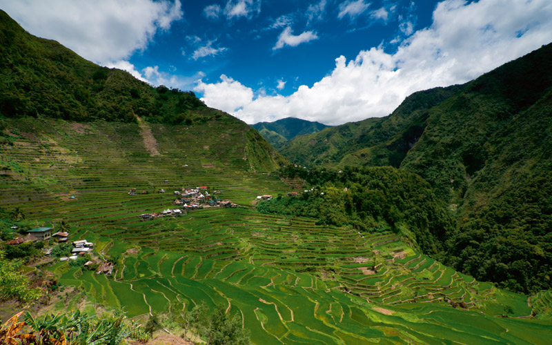 Rice-terraces-Philippines