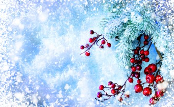 Christmas Tree and Decorations over Snow background. Winter fram