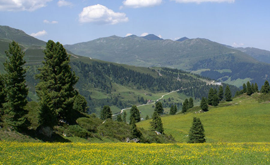 With a wide variety of walks and activities, Mayrhofen makes a wonderful base for a summer holiday.