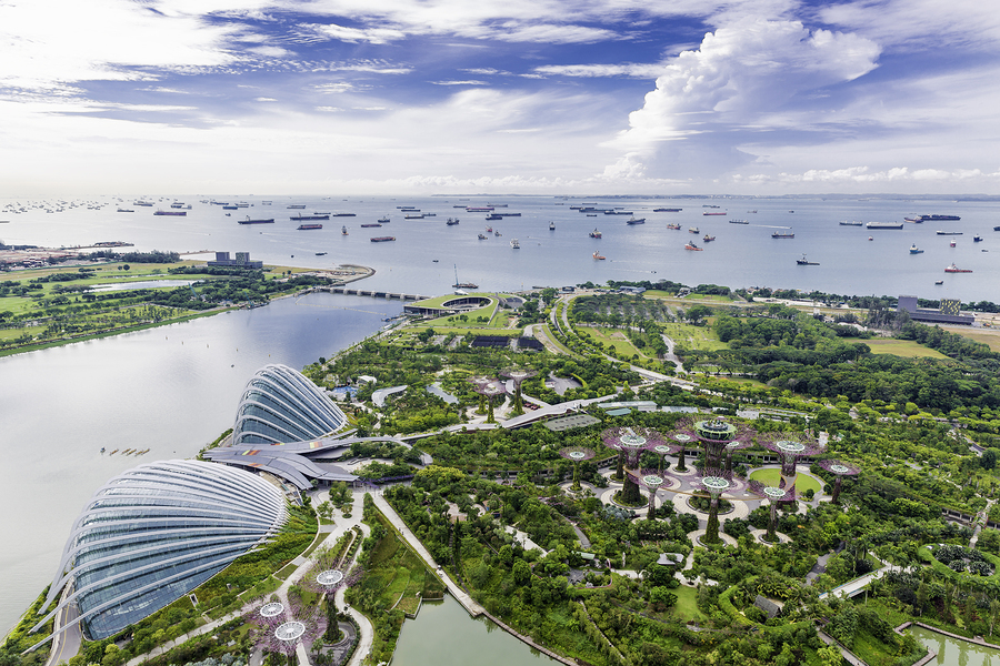 Gardens by the Bay in Marina Bay