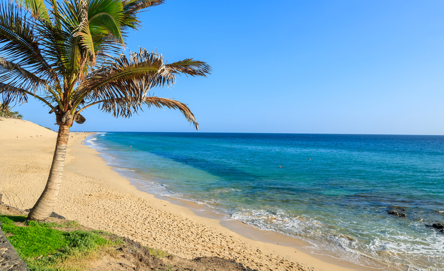 fuerteventura-la-olivia-beach