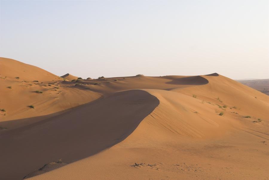 Crescent dunes, Wahiba Sands