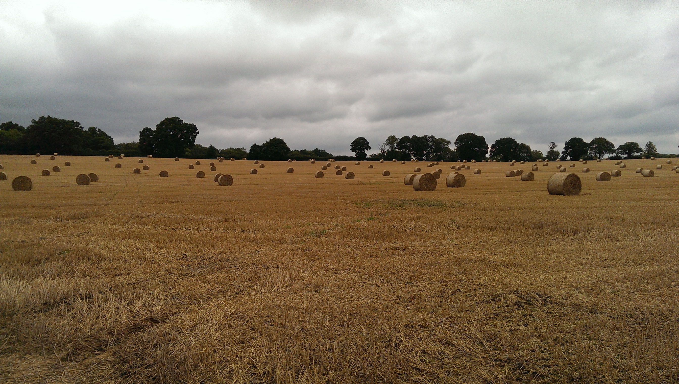 A moody sky with round bales of straw