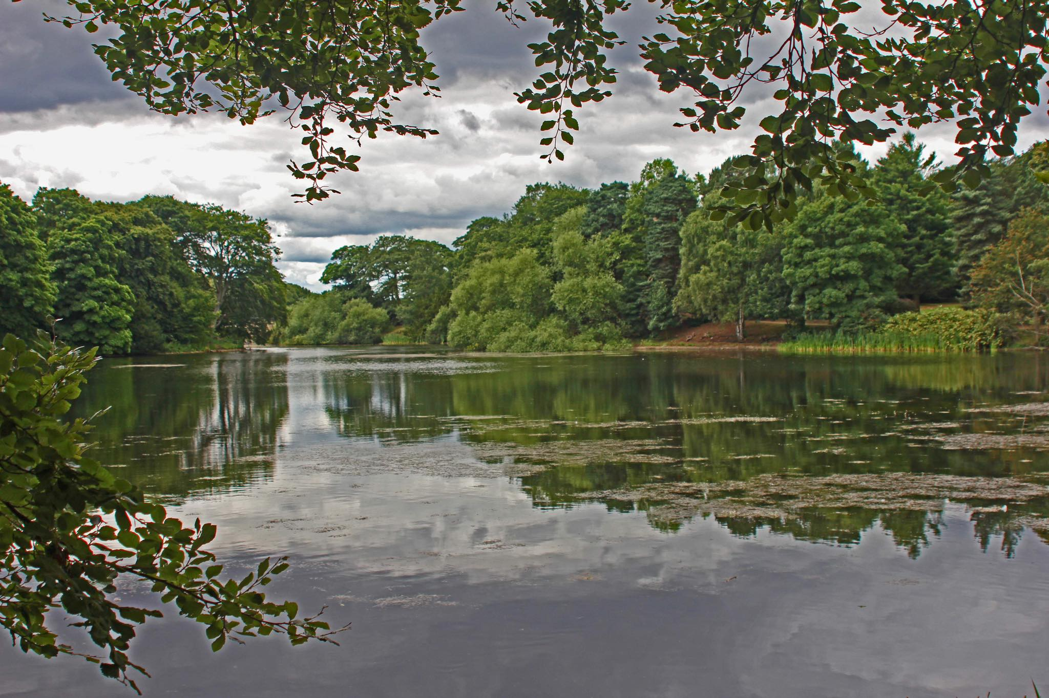 Lake at Nostell Priory by Ed Armstrong