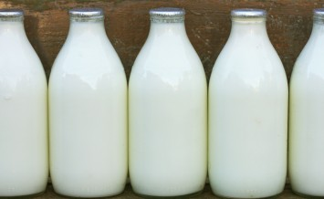 milk bottles standing on a doorstep after delivery