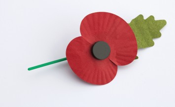 Poppy for Poppy Day or Remembrance Day isolated on white background.