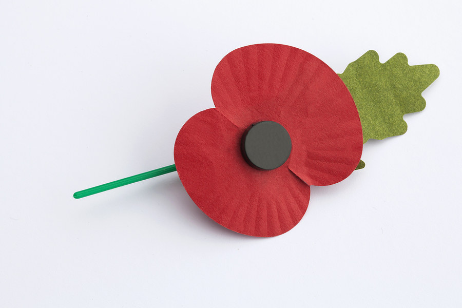 Do you wear your poppy on the left or the right? - Silversurfers