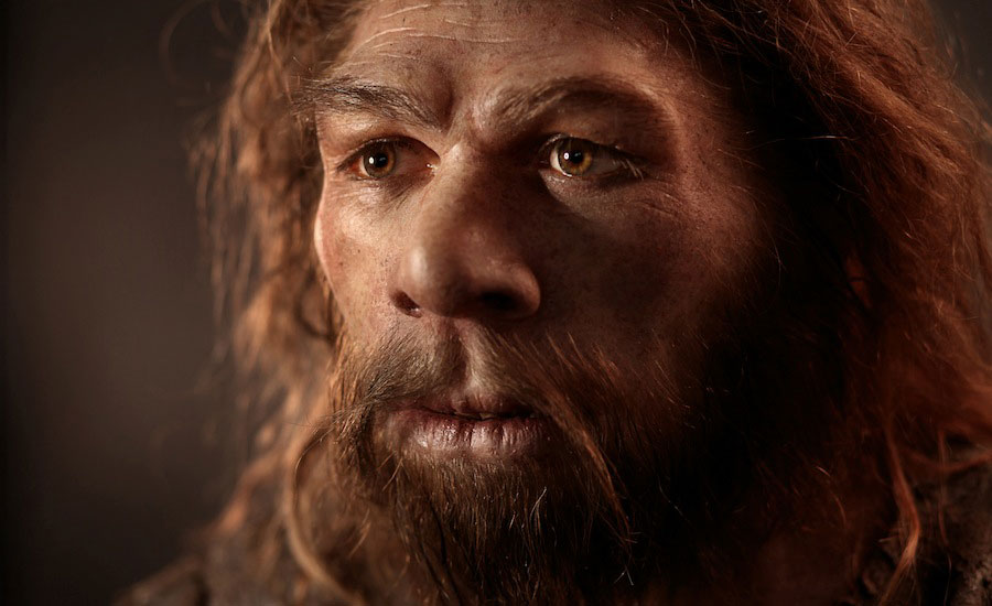 Neanderthal at Ice Age Island Exhibition