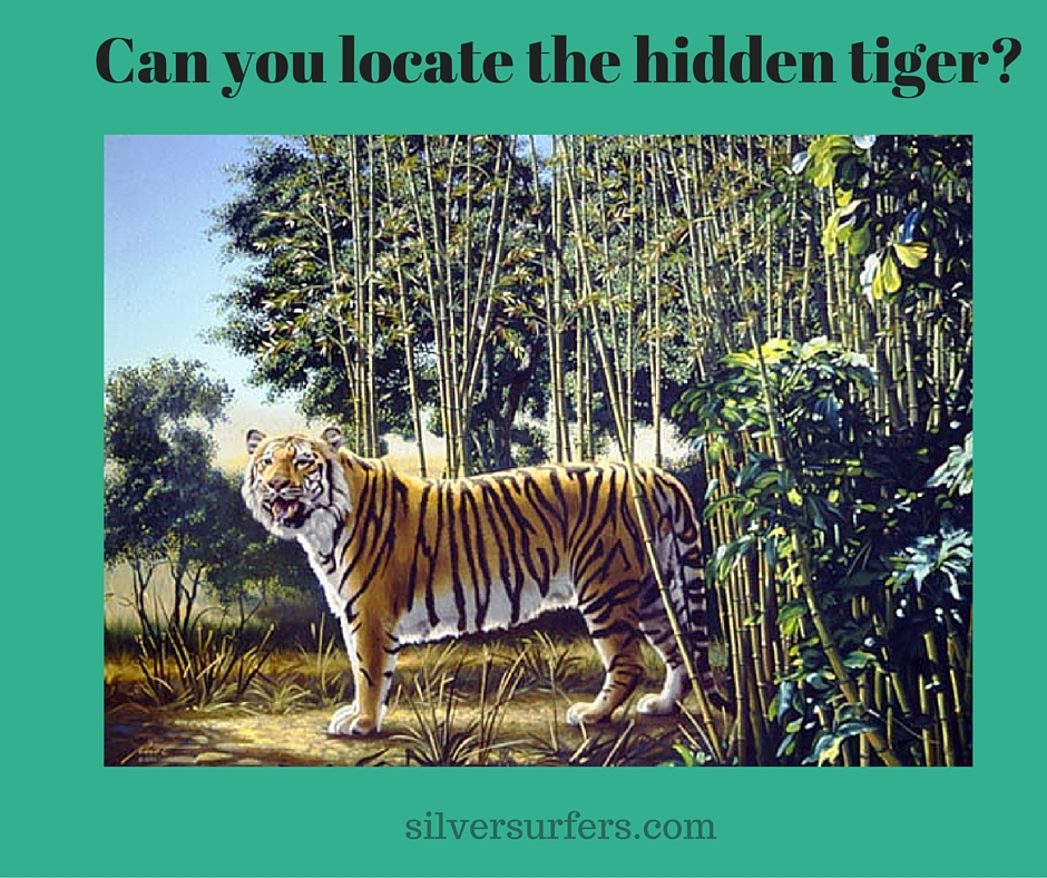 Can you locate the hidden tiger-