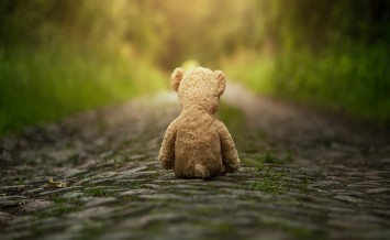 Lonely teddy bear sitting on the road at the sunset