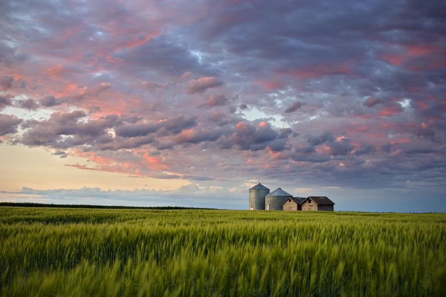 Prairie Plains, Saskatchewan