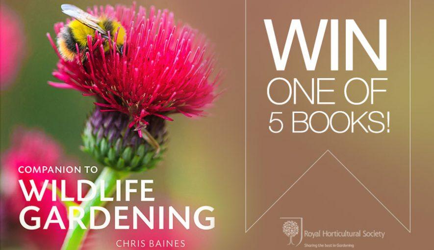 wildlife-companion-prize-draw