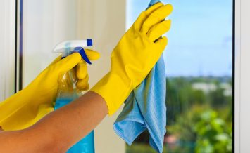 Cleaning Cleaner Window Housework Women Dusting Glass