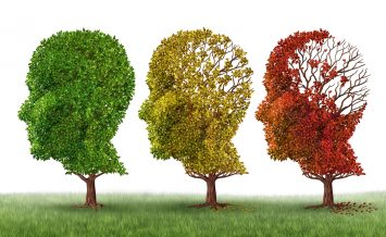 Memory loss and brain aging due to dementia and alzheimer's disease as a medical icon of a group of color changing autumn fall trees shaped as a human head losing leaves as intelligence function on a white background.