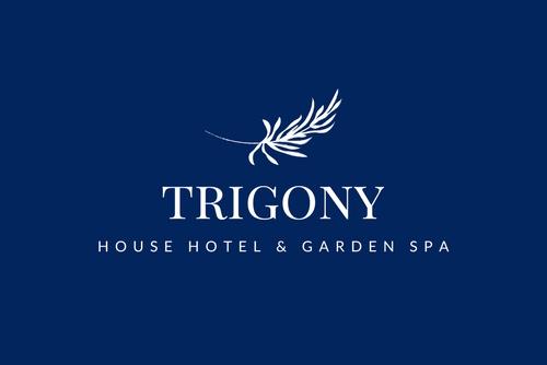 Trigony Cropped Logo D+